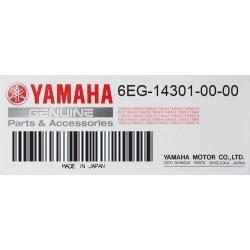 Carburador completo Yamaha F2.5B - 6EG-14301-00