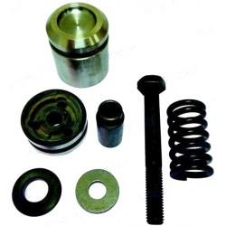 Kit reparación pistones trim 87399A2