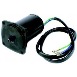 Motor Power Trim 437801 Johnson