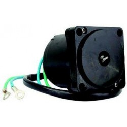 Motor Power Trim 5033838 Johnson