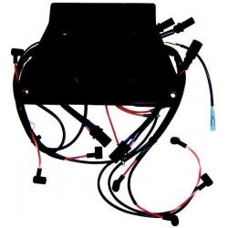 Caja Negra CDI 584642 Jhonson | Evinrude Recmar