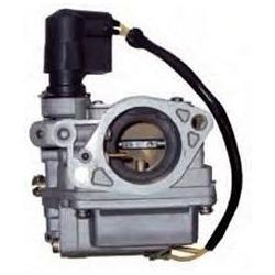 Carburador Yamaha 65W-14901-12
