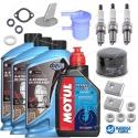 Kits Mantenimiento-Revisión Suzuki